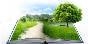 open book with tranquil scene of grass, tree, sky, and a path